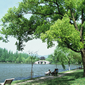 世界遺産 杭州西湖