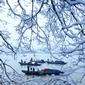 世界遺産 西湖冬景色