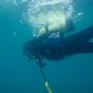 東海潜水ダイビングショップ