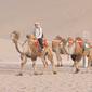 敦煌-鳴沙山とラクダ
