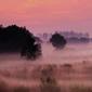 黄河岸辺—朝霧